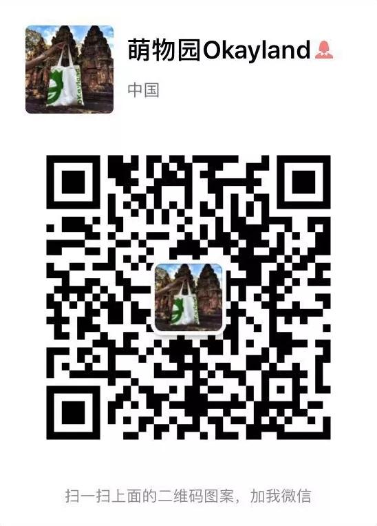 冠能飞盘犬中国挑战赛